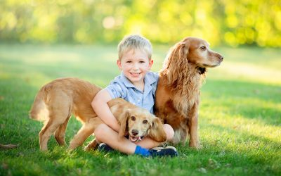 Here's why you should include your pets in your family portraits