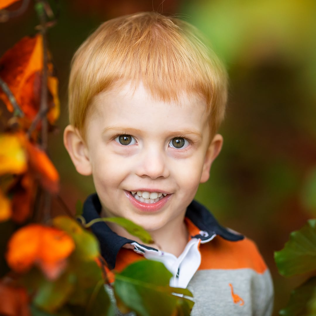 toddler peeking through autumn leaves during a photoshoot at wandelbury country park in cambridgeshire