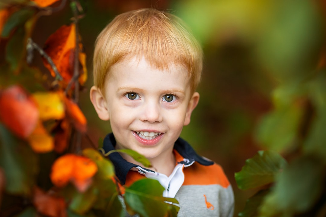 little boy peeping through the autumn leaves during a family photoshoot