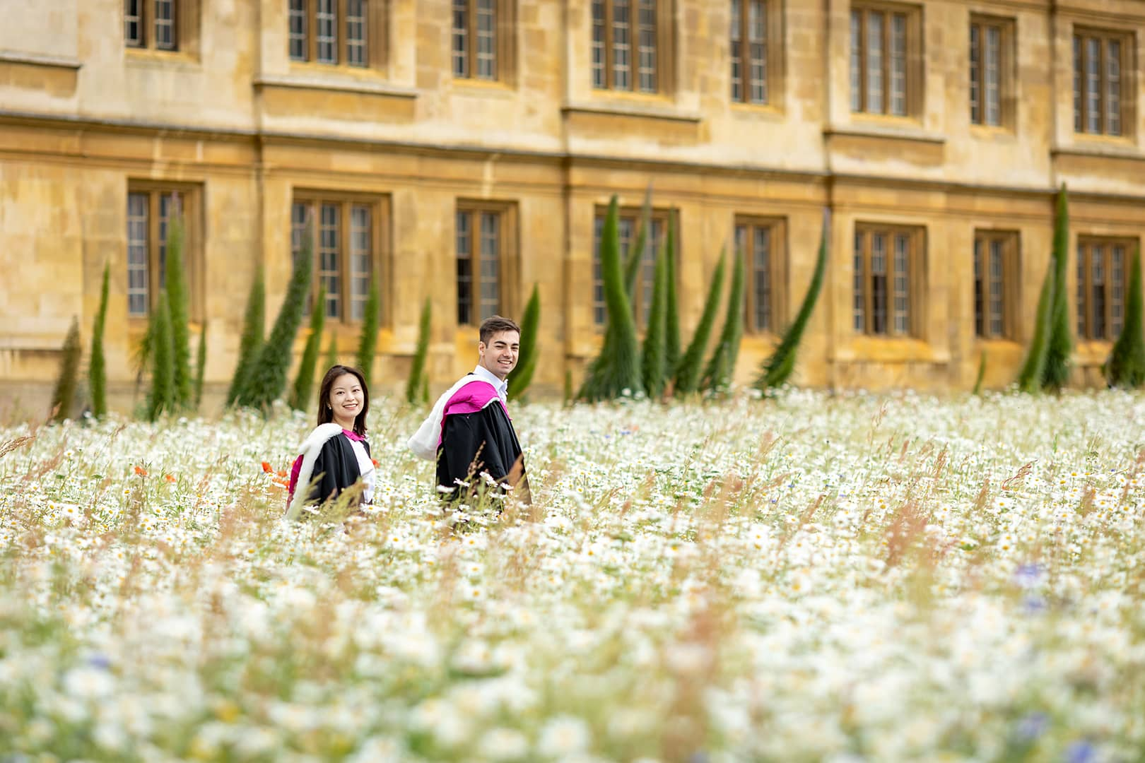 wildflower meadow at Kings College Cambridge